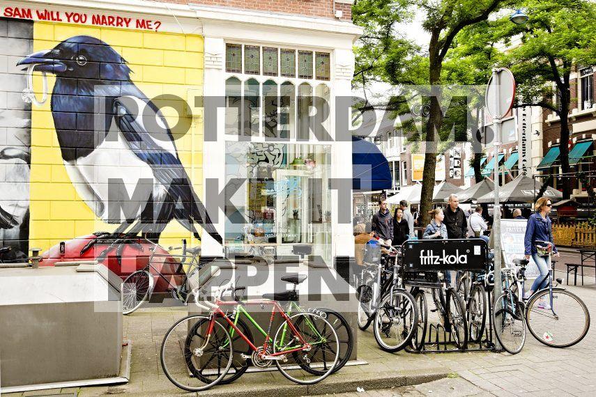 Street art 'Love Birds' gemaakt door Tymon Ferenc de Laat  & Robert Rost op de Boomgaardsstraat in het Witte de Withkwartier. Vermeld naast de naam van de fotograaf s.v.p. ook de naam van de kunstenaar en het kunstwerk.