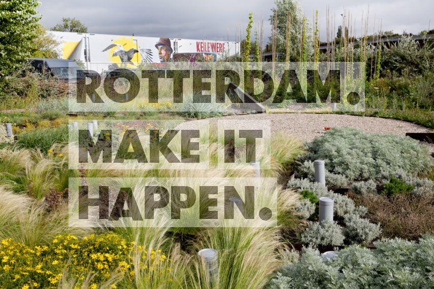 De Sponstuin in Rotterdam-West.