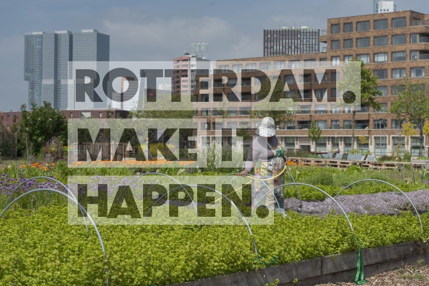 Feijenoord: Rotterdamse Munt.